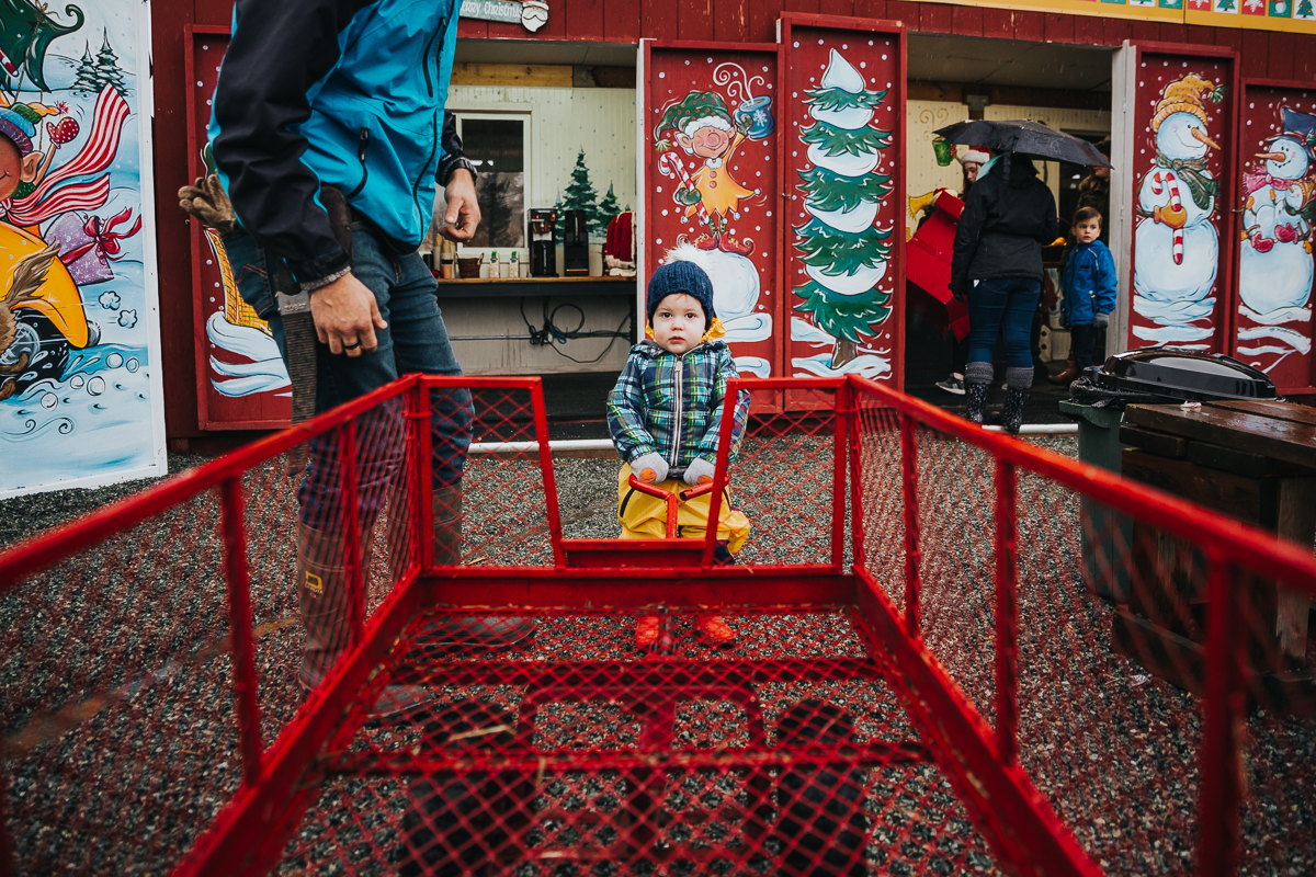 The designated cart puller  Christmas Tree Hunt Tradition at Oh Christmas Tree Farms in Langley, BC. Documentary Family Holiday Tradition, Real life moments with a family of 7 by Mimsical Photography. West Coast photographer in Lower Mainland, British Columbia.