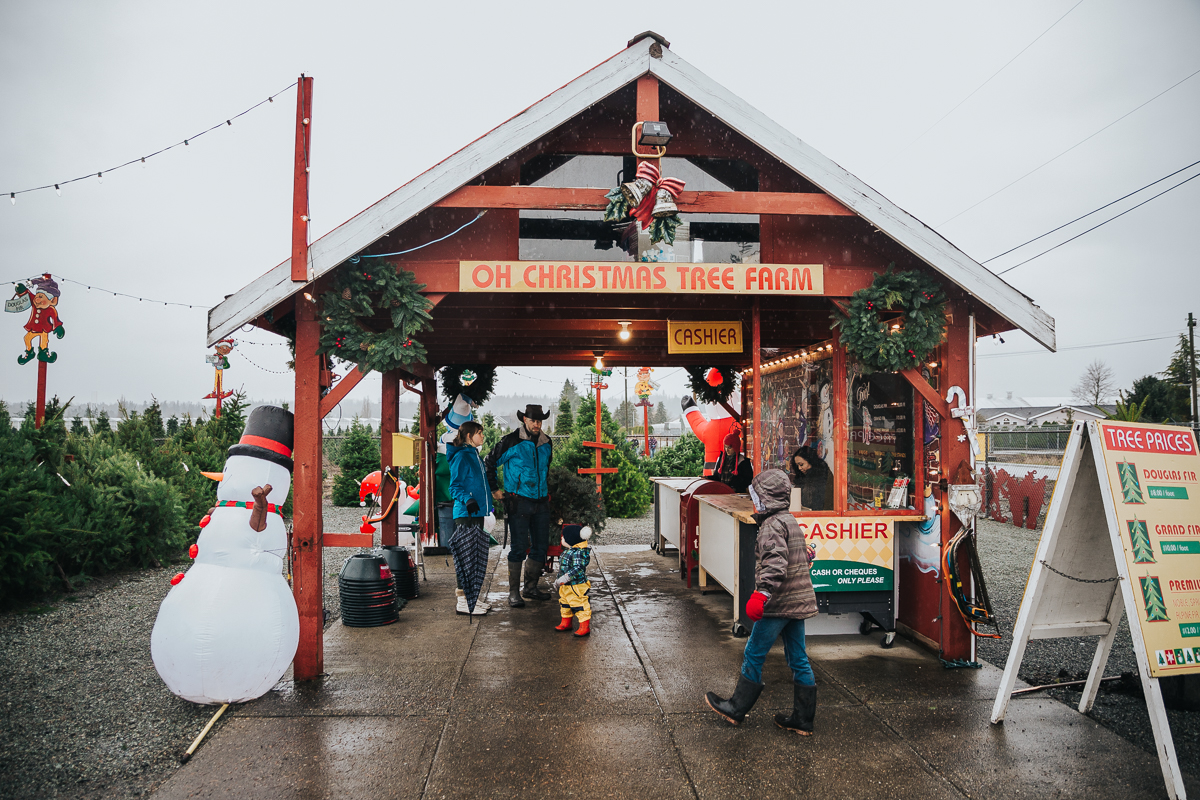 The Measuring and purchase of the tree  Christmas Tree Hunt Tradition at Oh Christmas Tree Farms in Langley, BC. Documentary Family Holiday Tradition, Real life moments with a family of 7 by Mimsical Photography. West Coast photographer in Lower Mainland, British Columbia