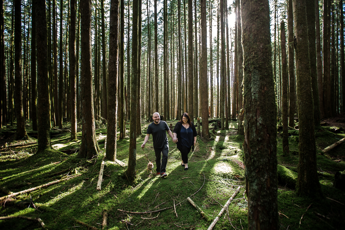 Man walking holding leash of small chihuahua and holding his fiance's hand as they walk between the forest trees across mossy floor of forest during spring engagement photography at  Spirea Nature Trail in Golden Ears Provincial Park in British Columbia by Mimsical Photography
