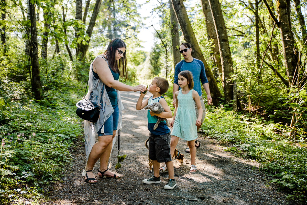 Sniffing wildflowers during a forest walk during a Family Photography session at Aldergrove Bowl Provincial park in Abbotsford, British Columbia on a spring day  #vancouverfamilyphotographer #metrovancouver #candidfamilyphotos #lifestylefamily by mimsical photography christina voorhorst