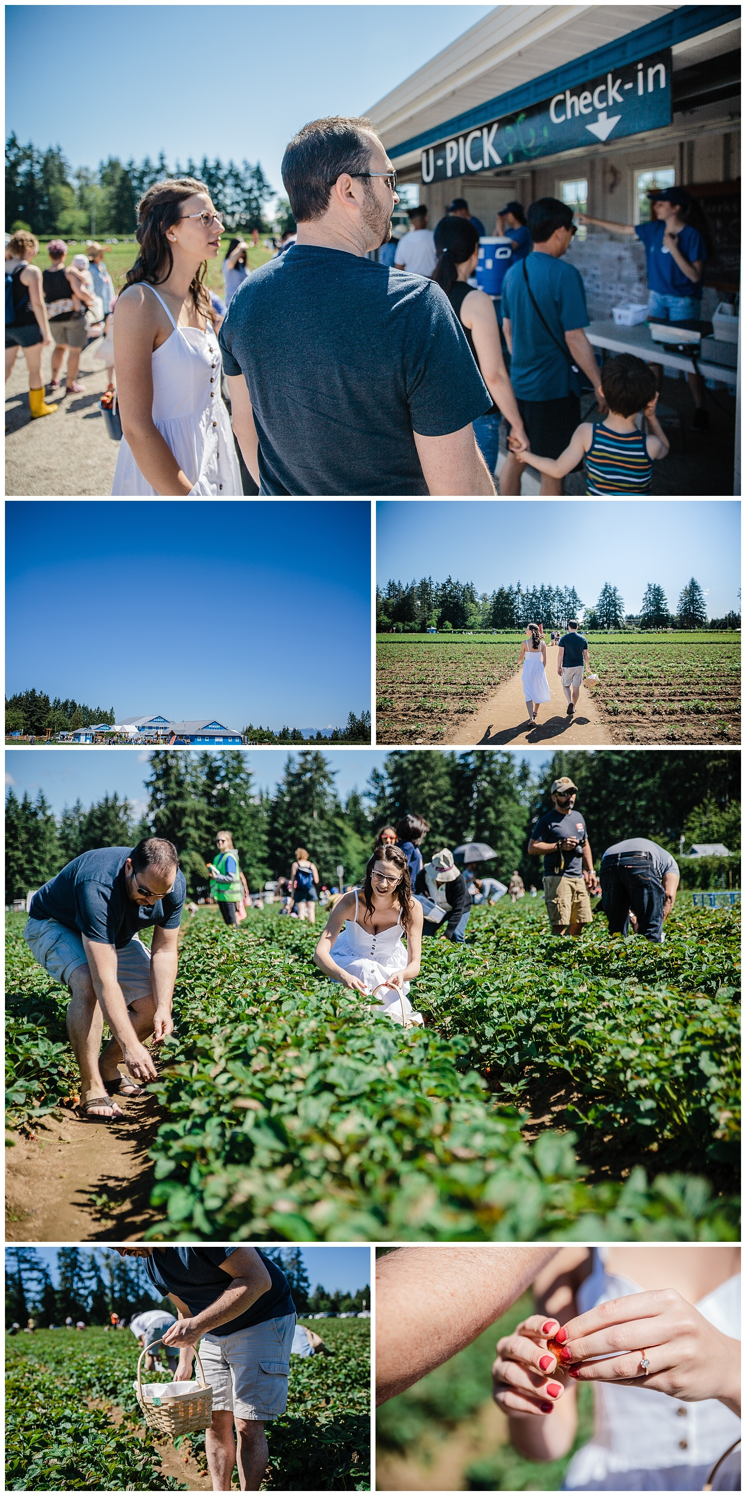 Krause Berry Farm Documentary Fun Engagement Photographer Fort Langley  Mustard Yellow City -003_collage.jpg