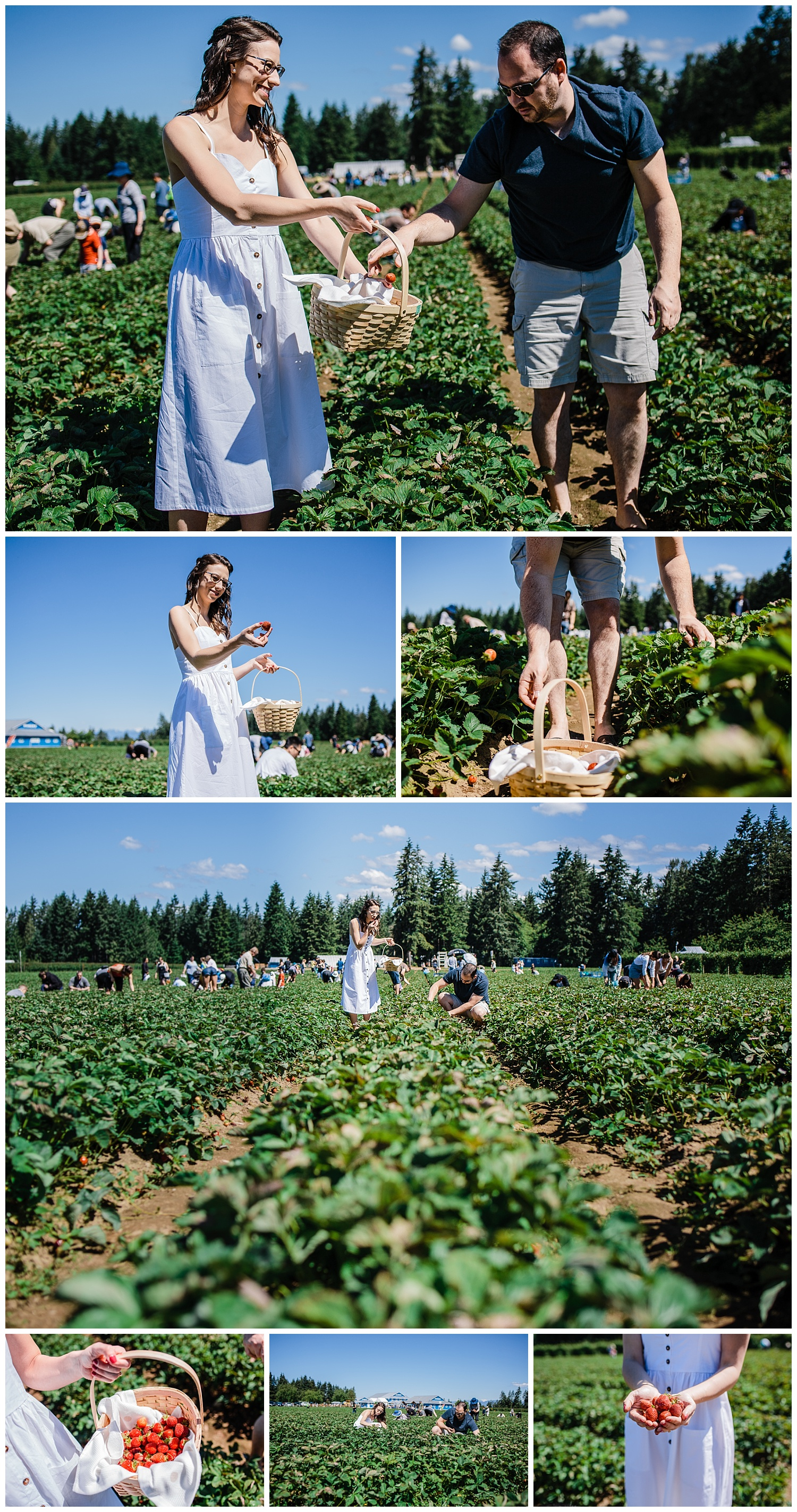 Krause Berry Farm Documentary Fun Engagement Photographer Fort Langley  Mustard Yellow City -035_collage.jpg