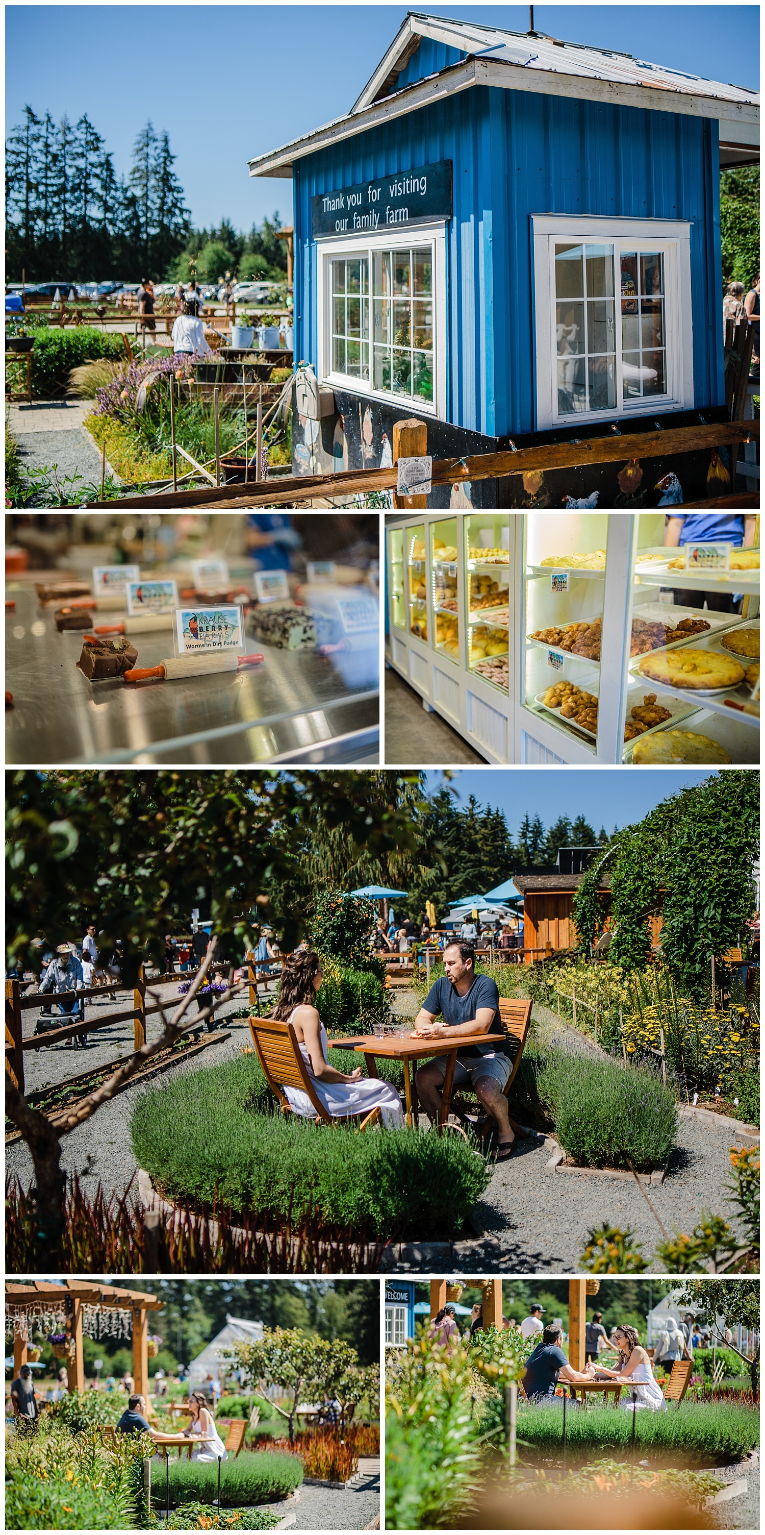 Krause Berry Farm Documentary Fun Engagement Photographer Fort Langley  Mustard Yellow City -085_collage.jpg