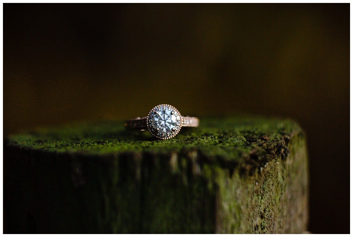 Redwood Park Surrey Engagement Photographer Couples Fall Evening_0023.jpg