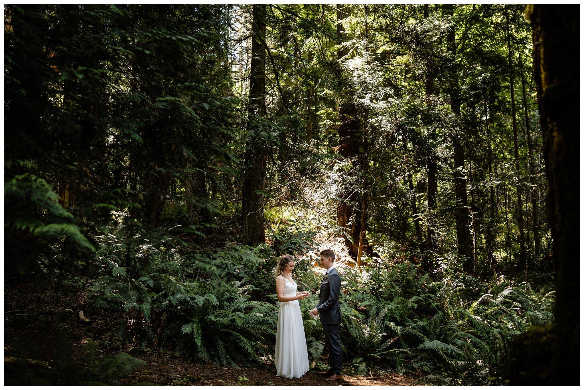 Salt Spring Island Wedding Photographer Destination Wedding Ruckle Provincial Park_0015.jpg