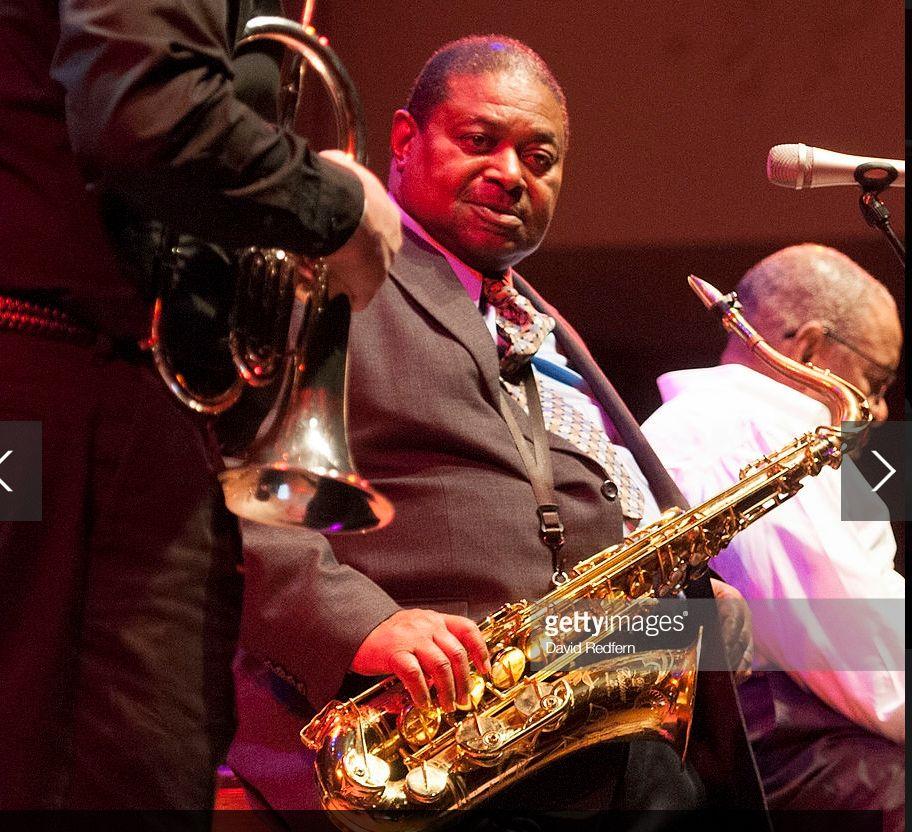 Screenshot-2018-6-20 Bristol International Jazz Blues Festival 2014 - Day 2.jpg