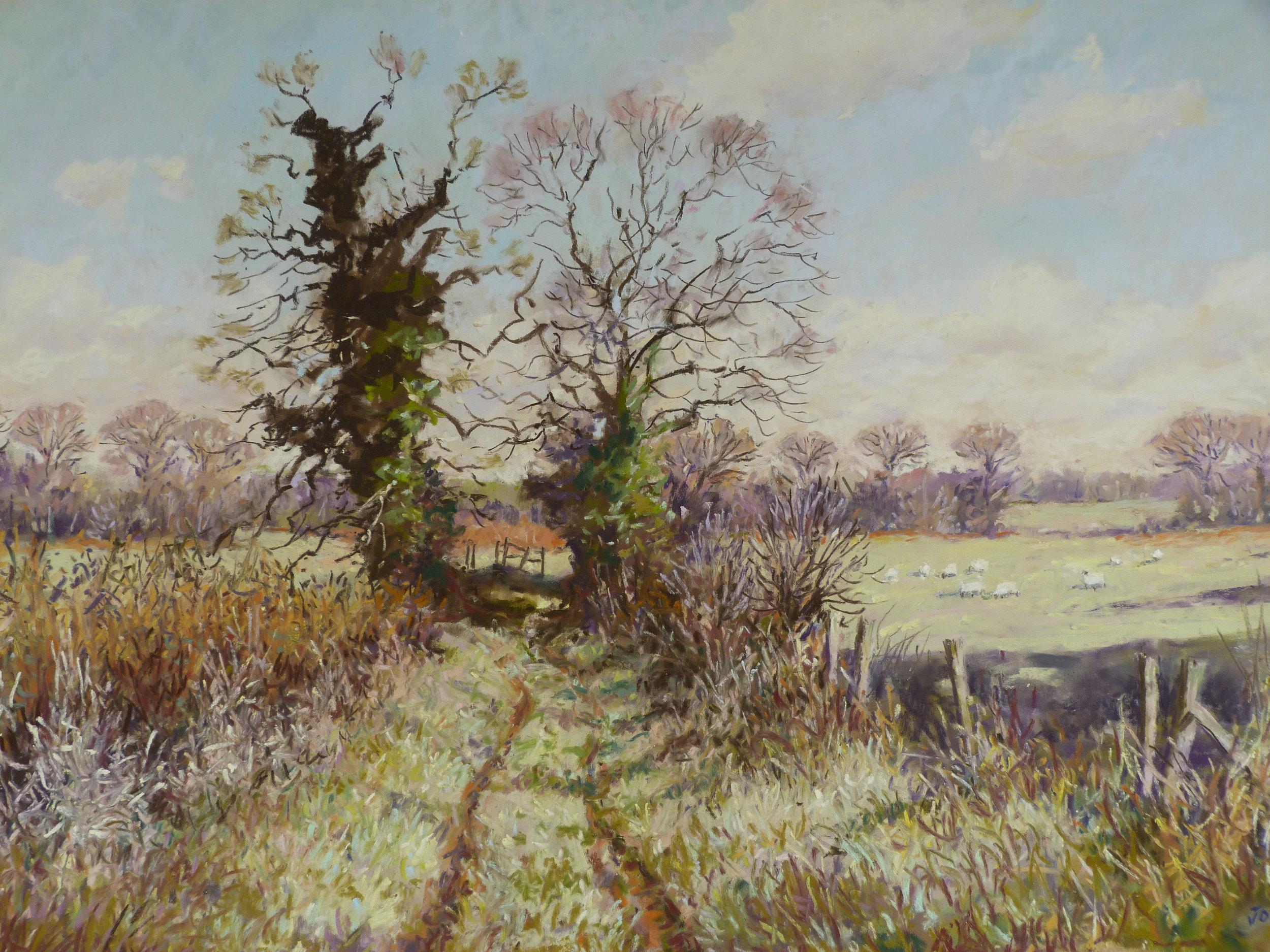 SHEPHERDS LANE: 13.5 x 18 in: pastel