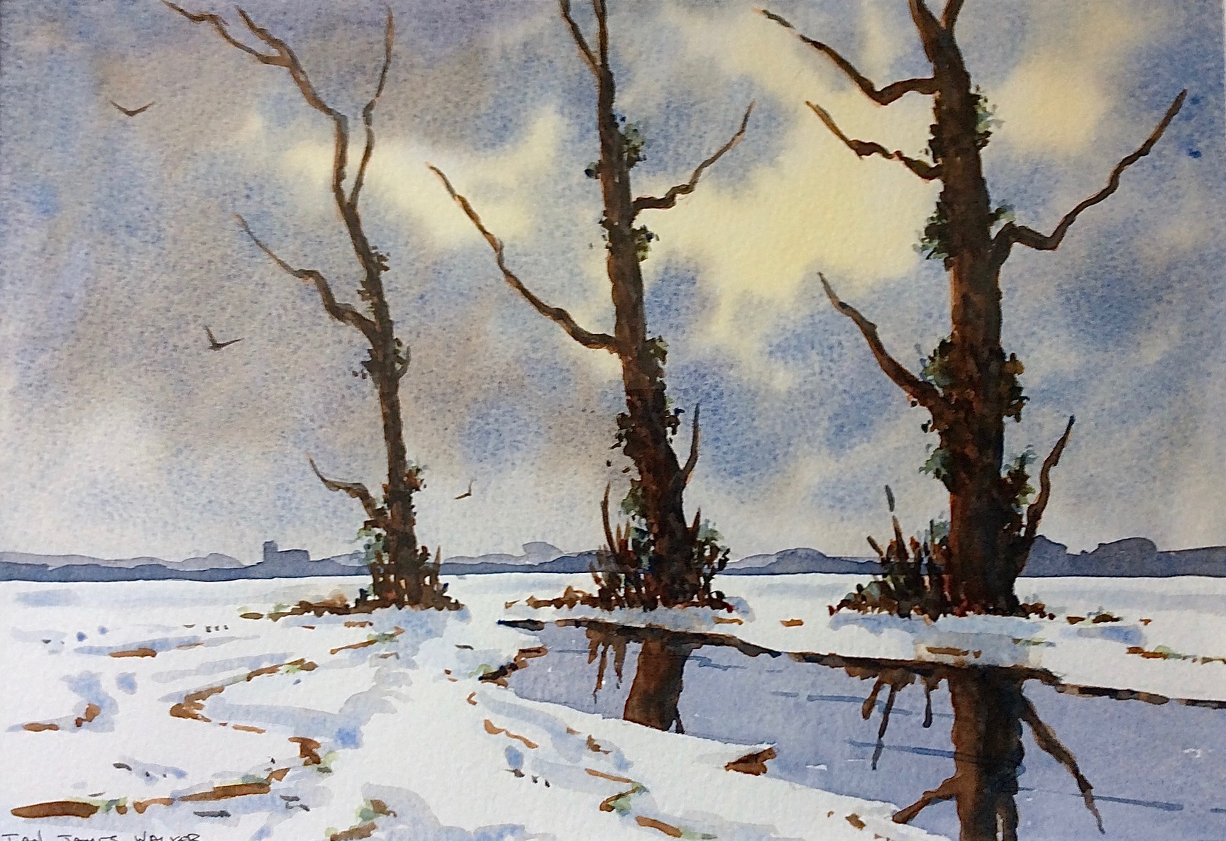 NORFOLK MARSHES IN WINTER: 22 x 32 cm: watercolour