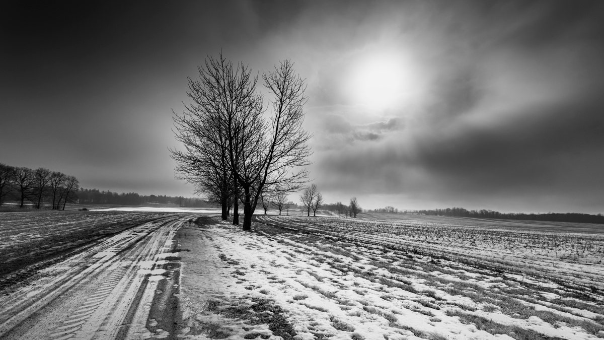 SHF-sun-winter-view-Feb-17-4BW.jpg