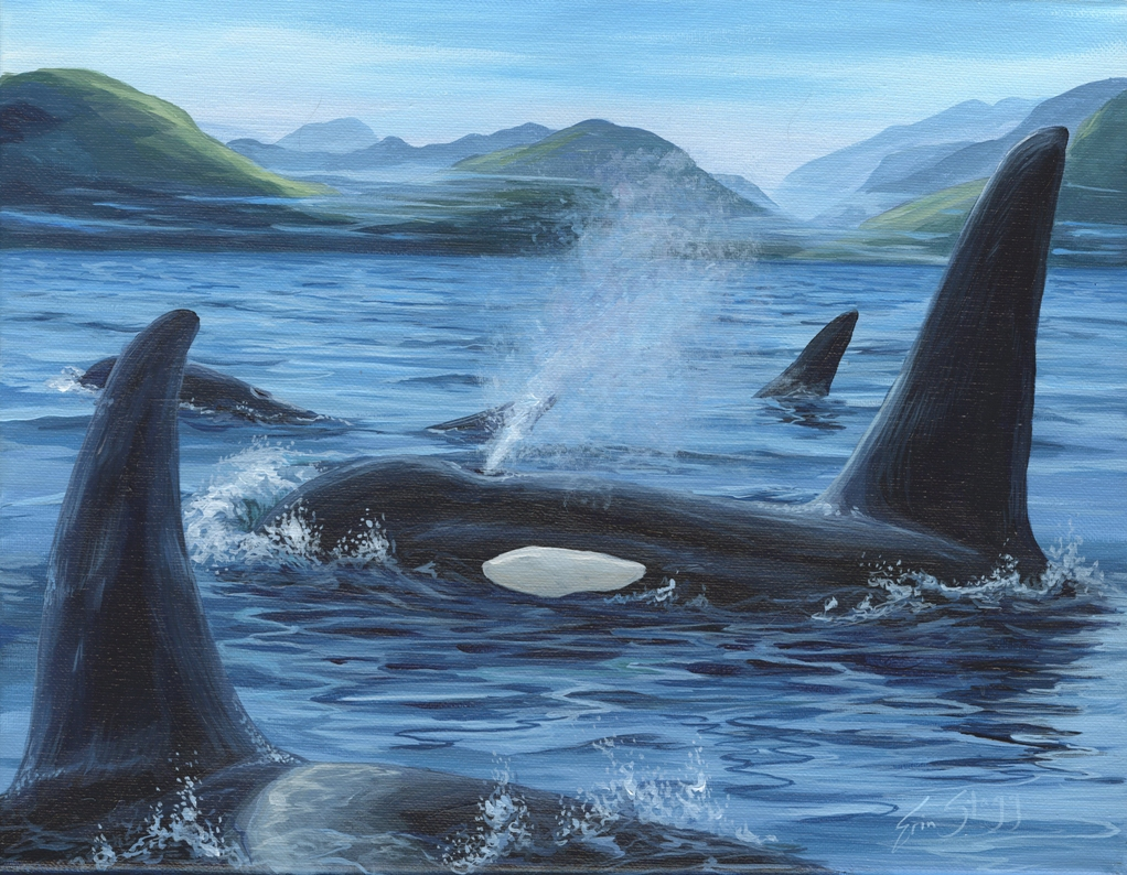 orcafamily - sm.jpg
