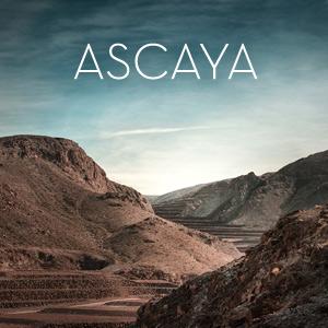 Ascaya  →   for SelectNY