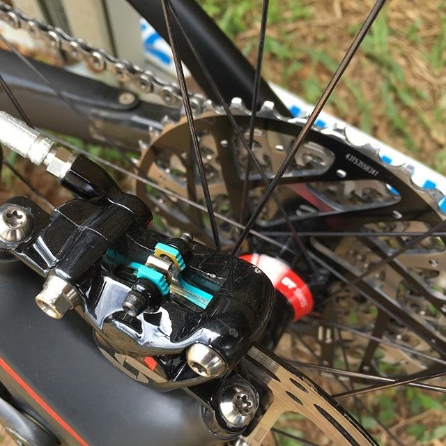 @milesbrakes Spotted at the World Cup in Cairns!
