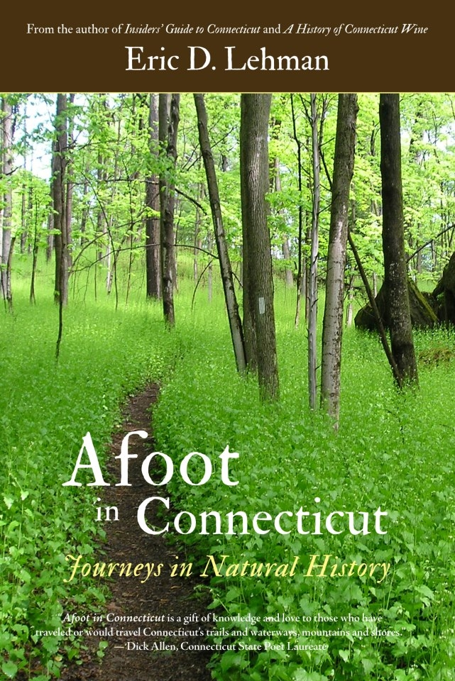 afoot cover
