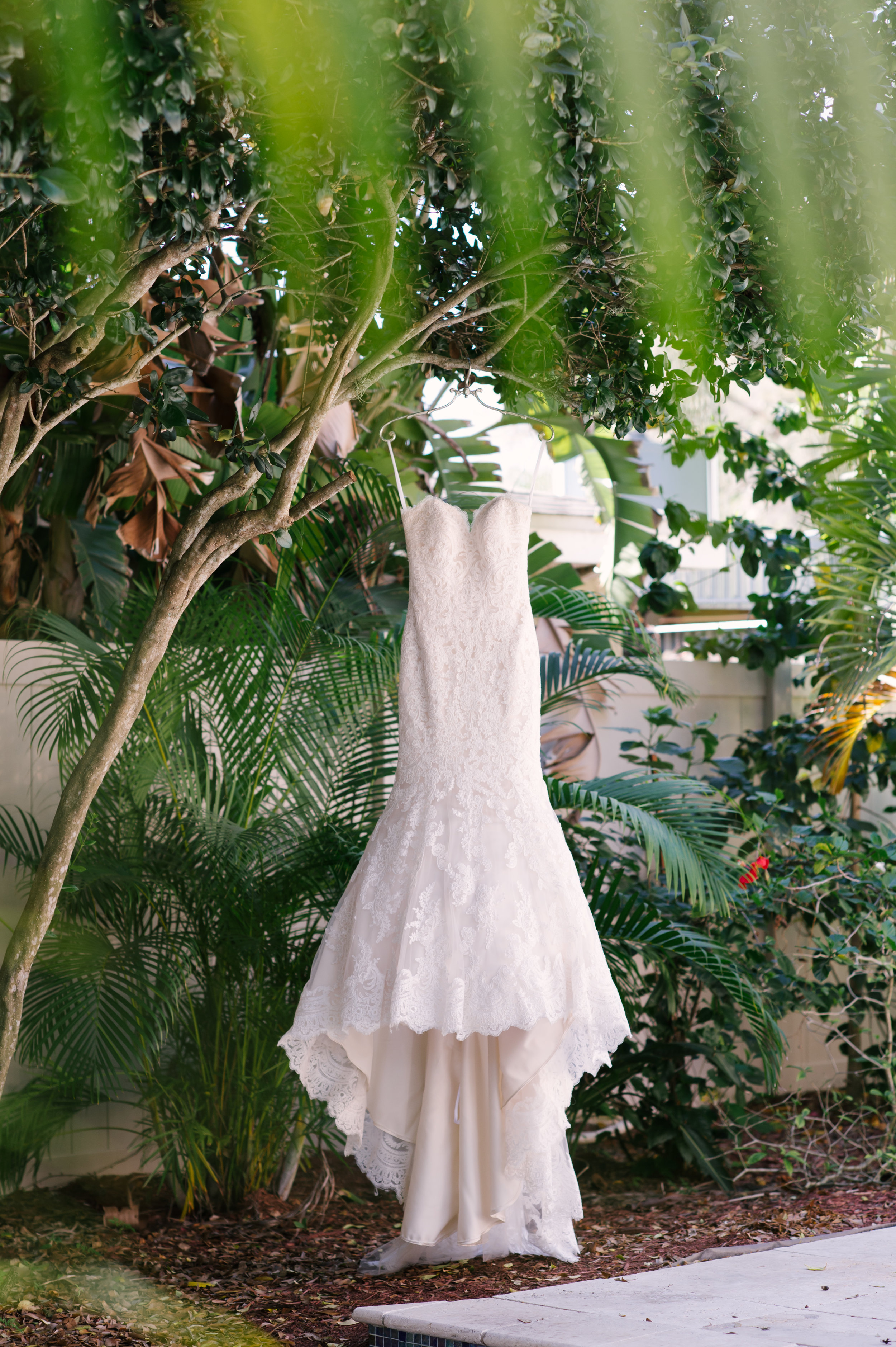 The bride's strapless, lace, trumpet gown against the greenery of the country club.