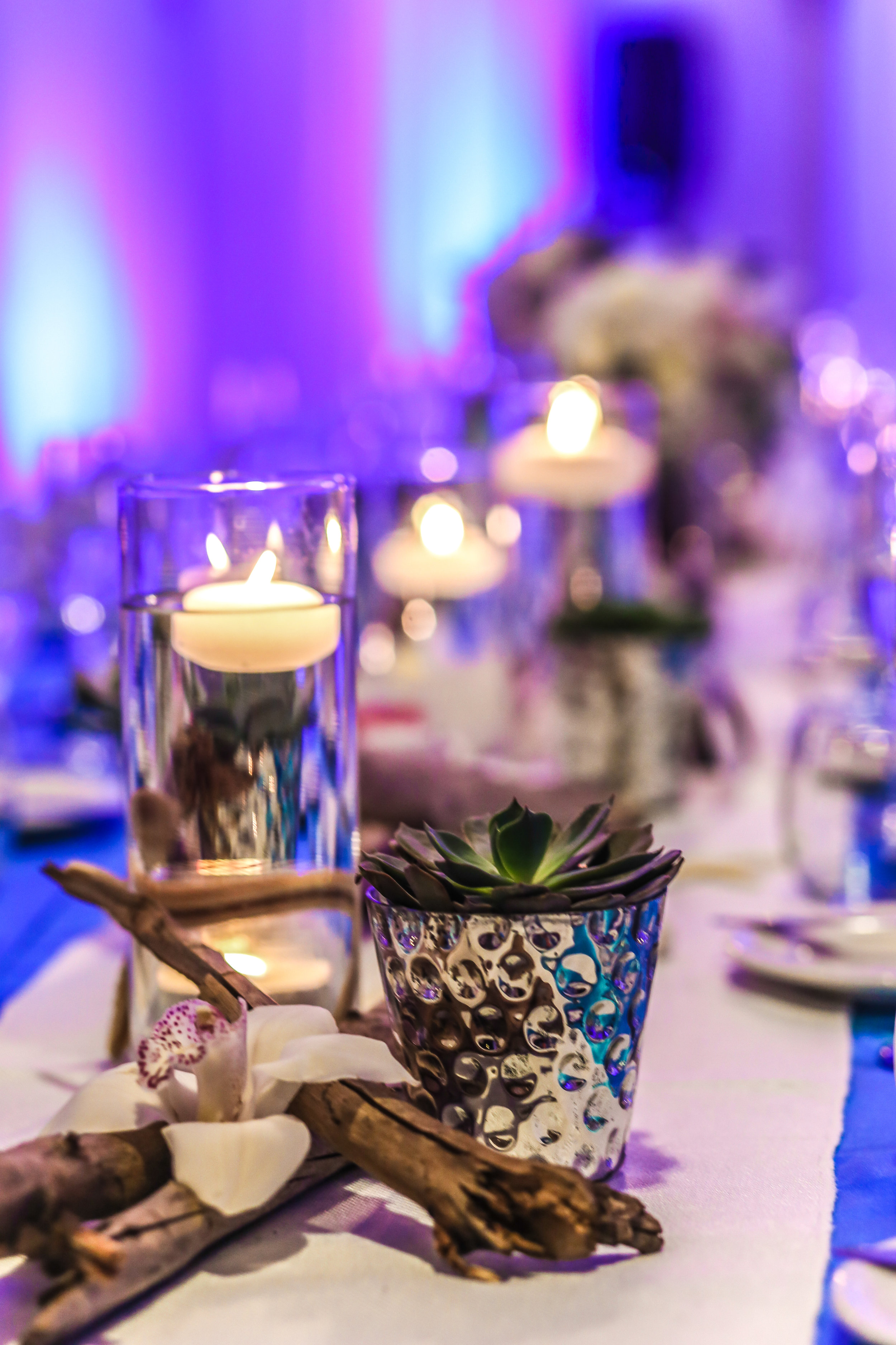 Burlap table runners on blue linens were set along feasting tables adorned with centerpieces of driftwood and accented with succulents, shells, soft candle light, and lanterns.