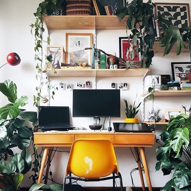 If you know our CEO personally, you would know she has become obsessed with building a house plant collection. We can picture her surrounded by happy plants designing away! 🌿#workspacewednesday  photo creed: @pinterest