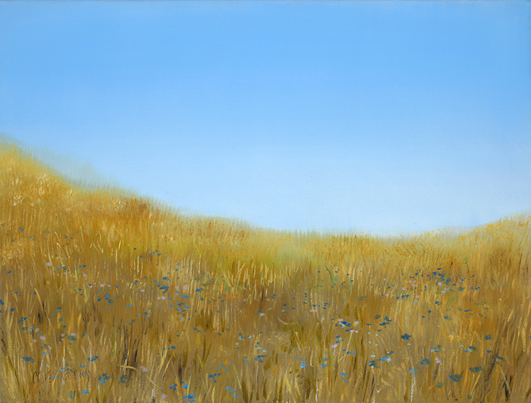 """Foothill Bloom , 2014 Oil on canvas, 12""""x16""""  Available"""