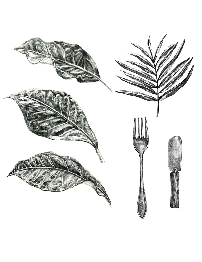 pencil drawings-lores.jpg