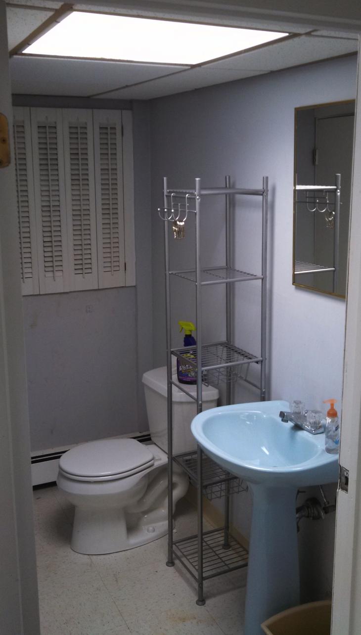 Basement Full Bath- Before