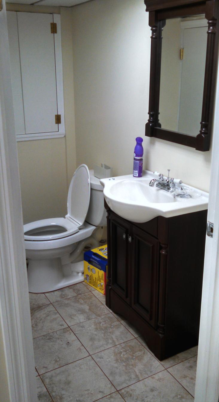 Basement Full Bath- After