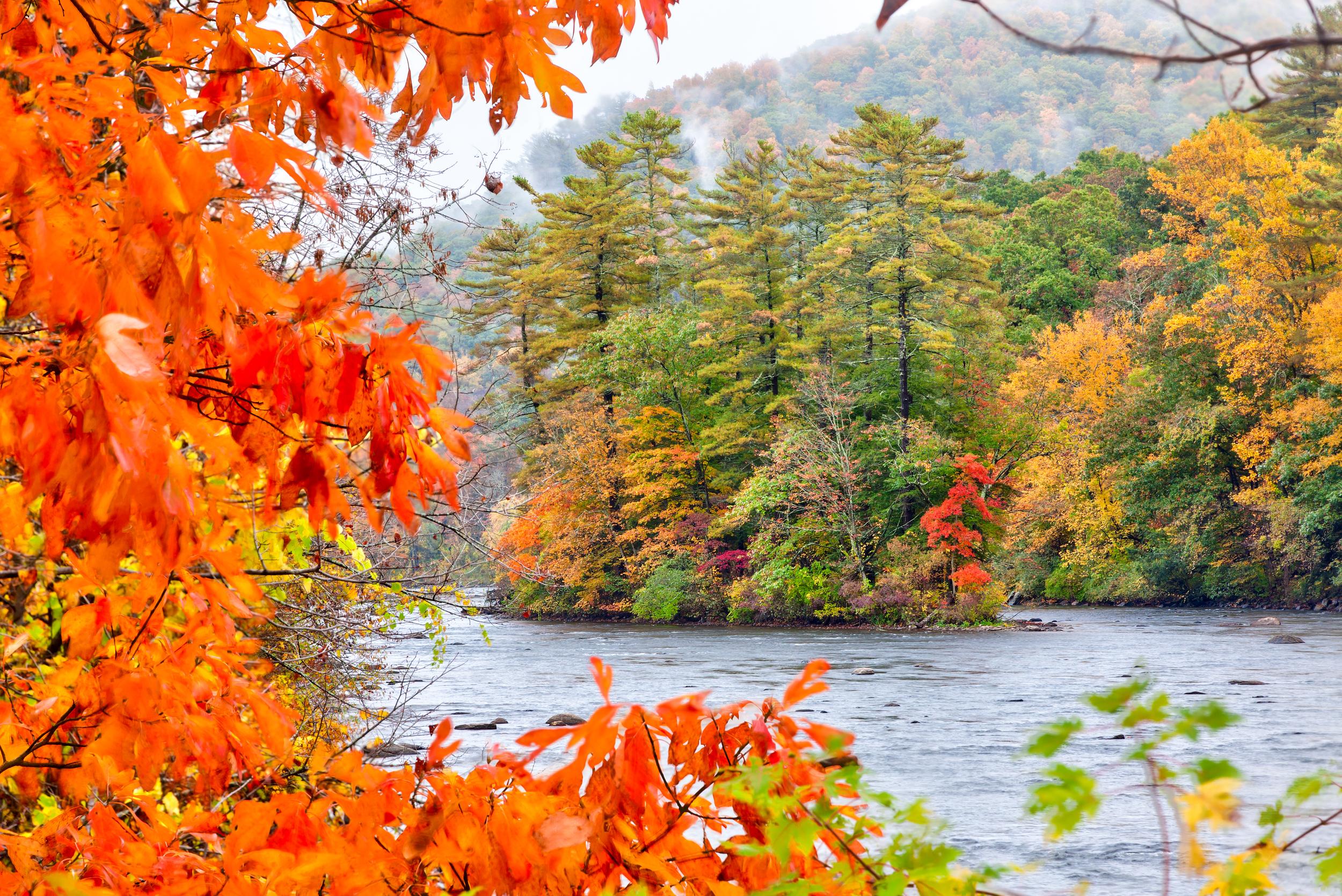 Autume Scenic River