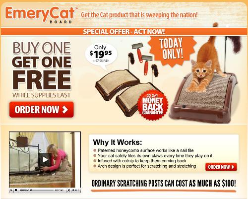 emery-cat-splash.png