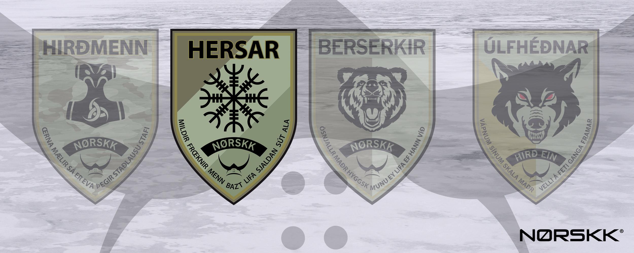 patches_hersar.jpg