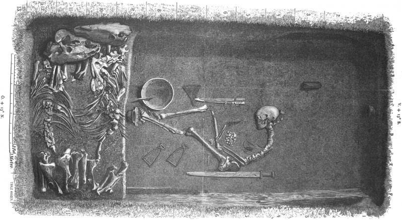 An illustration based on the original plan of a Birka grave shows a Viking warrior who scientists say was a horse.Photo: Evald Hansen/American Journal of Physical Anthropology