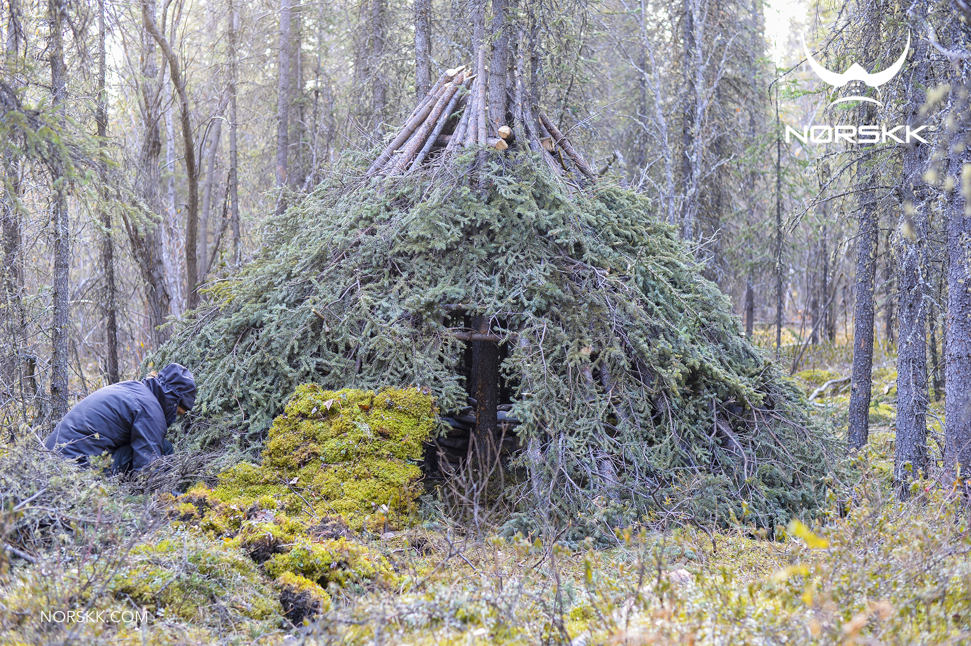 shelter_roundhouse25.jpg