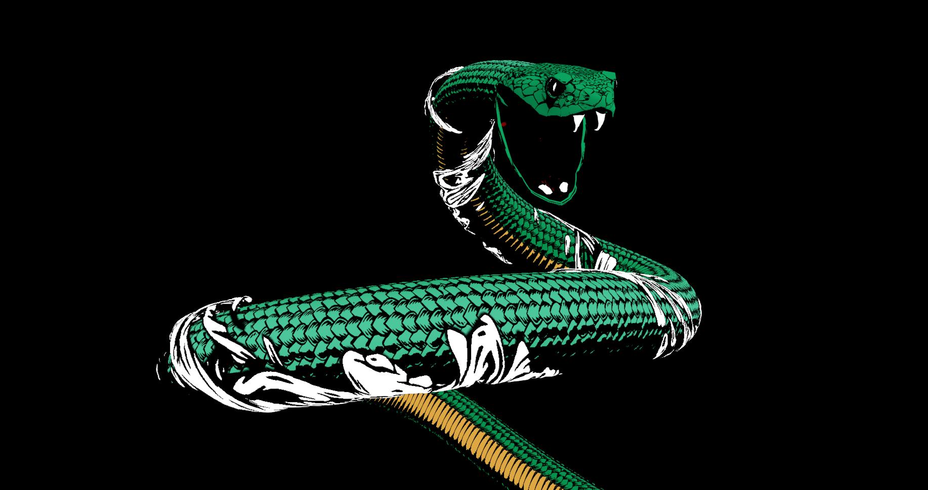 Initial Viper Look