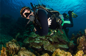 A TDI / PADI scuba diver with the roatan tec center is diving along side a beautiful reef in roatan, she is diving on nitrox that she attained from coconut tree divers in roatan.