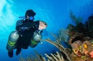 Sidemount scuba diver along the beautiful reef of roatan diving with the scuba company Coconut Tree Divers in west end.