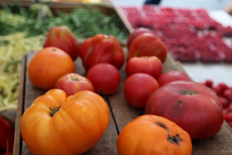 big heirloom tomatoes