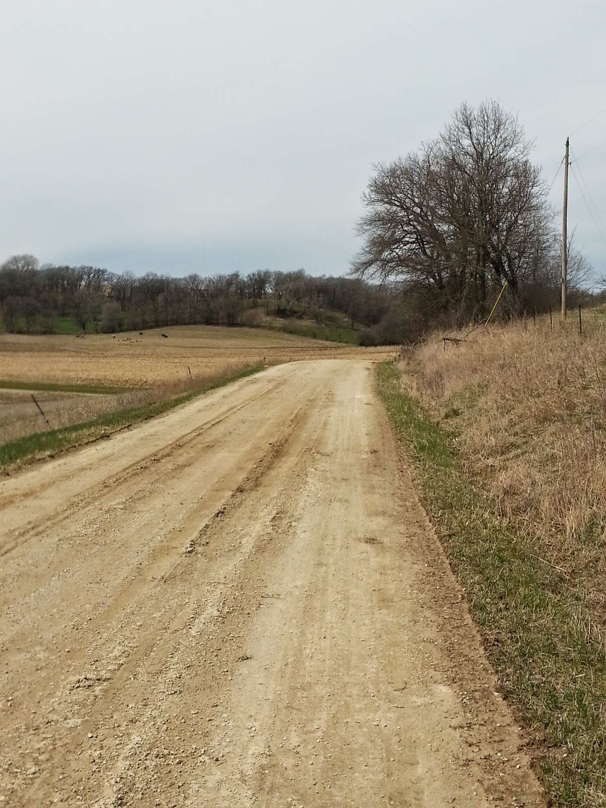The scenery was beautiful all day and the gravel was for the most part fast.