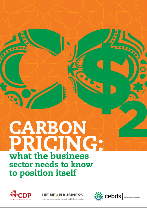 Carbon Pricing: what the business sector needs to know to position itself