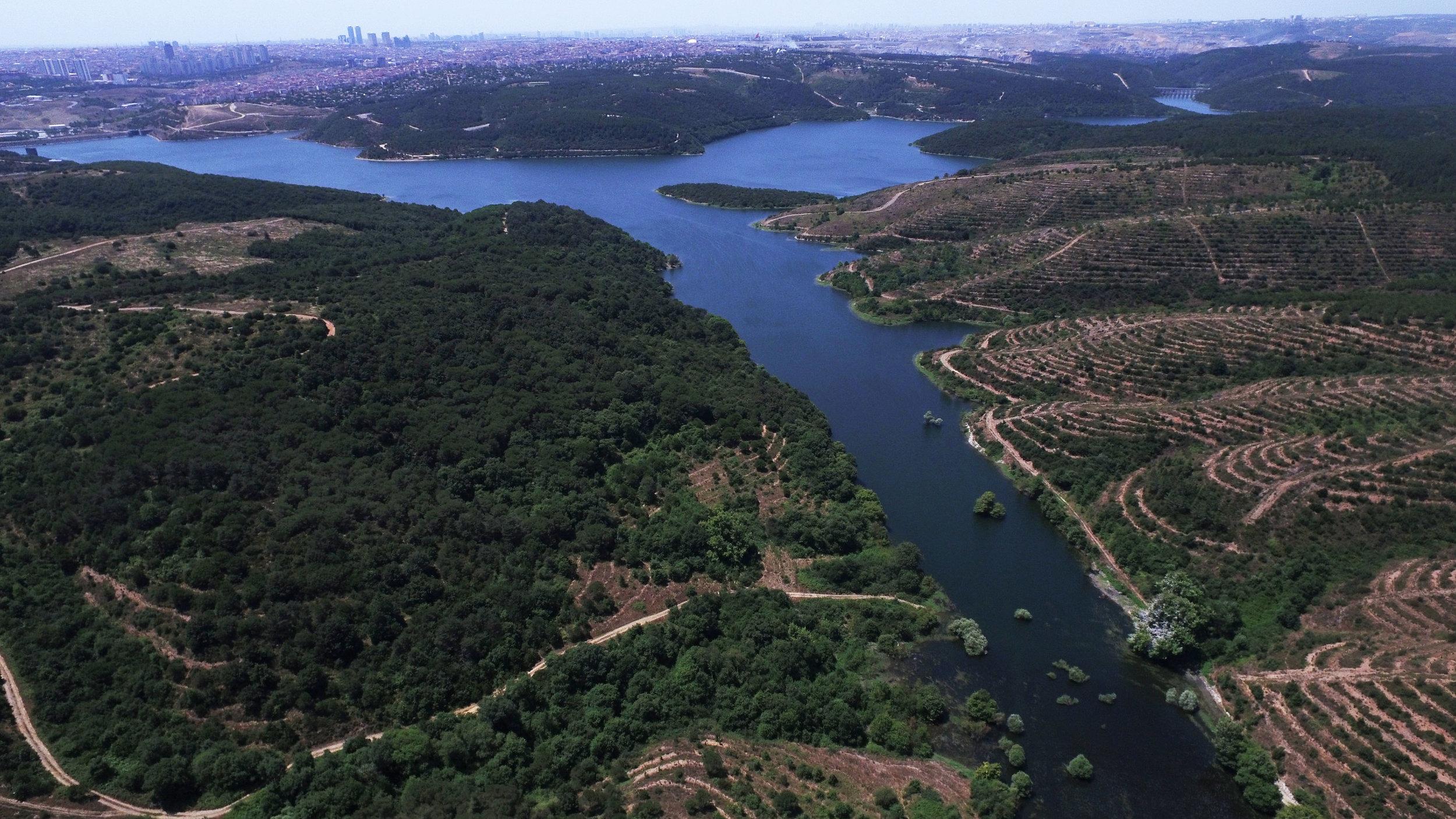 Afforestation project site financed by Garanti Bank