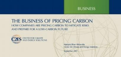 internal+carbon+C2ES.JPG