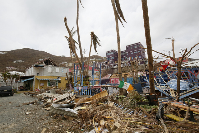 Dominica after hurricane. Originally posted on  CAPE Blog .