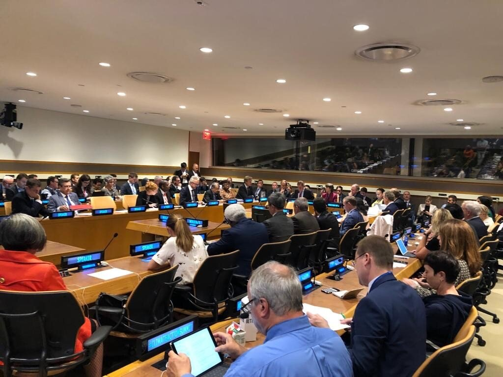 Accelerating ambitious carbon pricing UNSG 2019