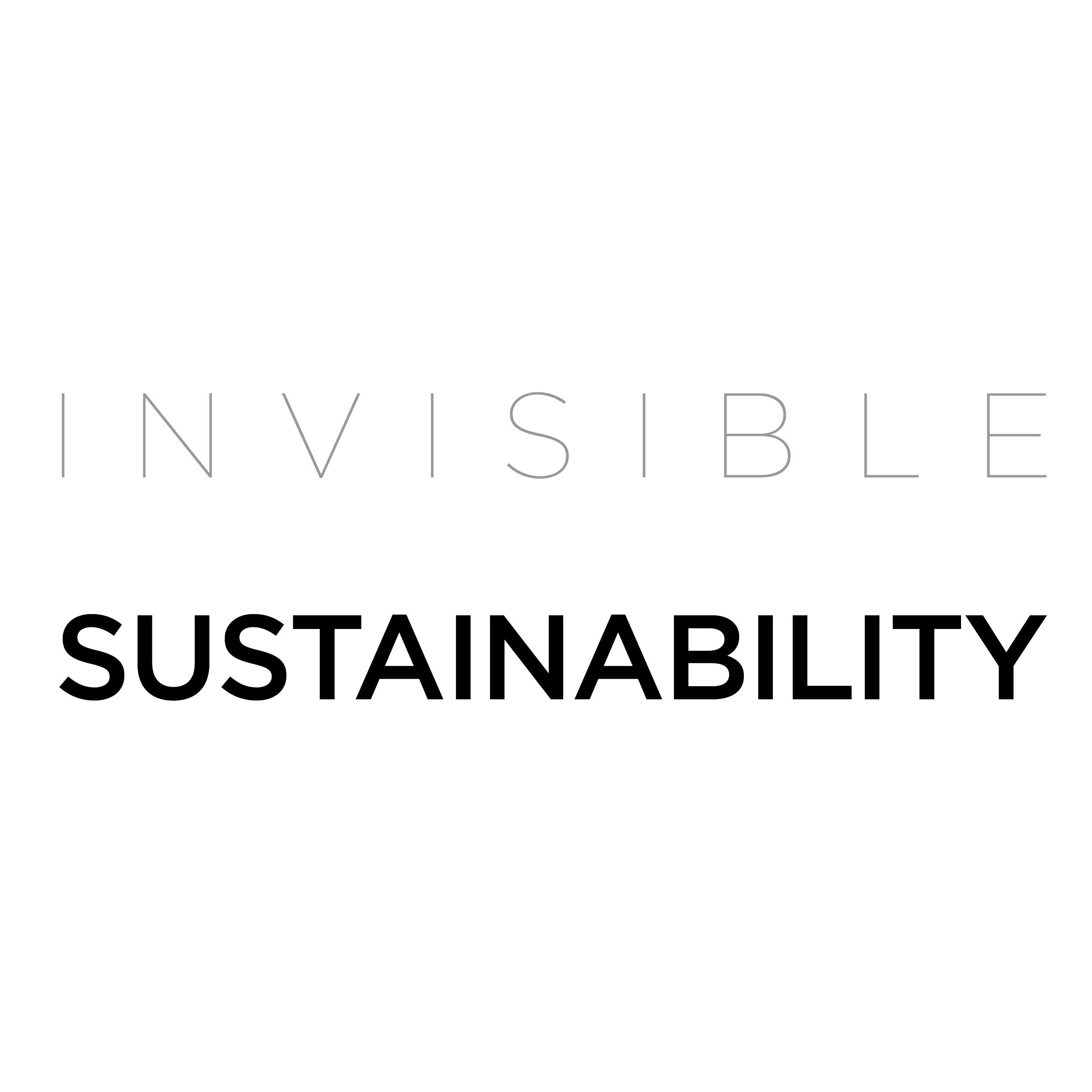 invisible_sustainability_.jpg