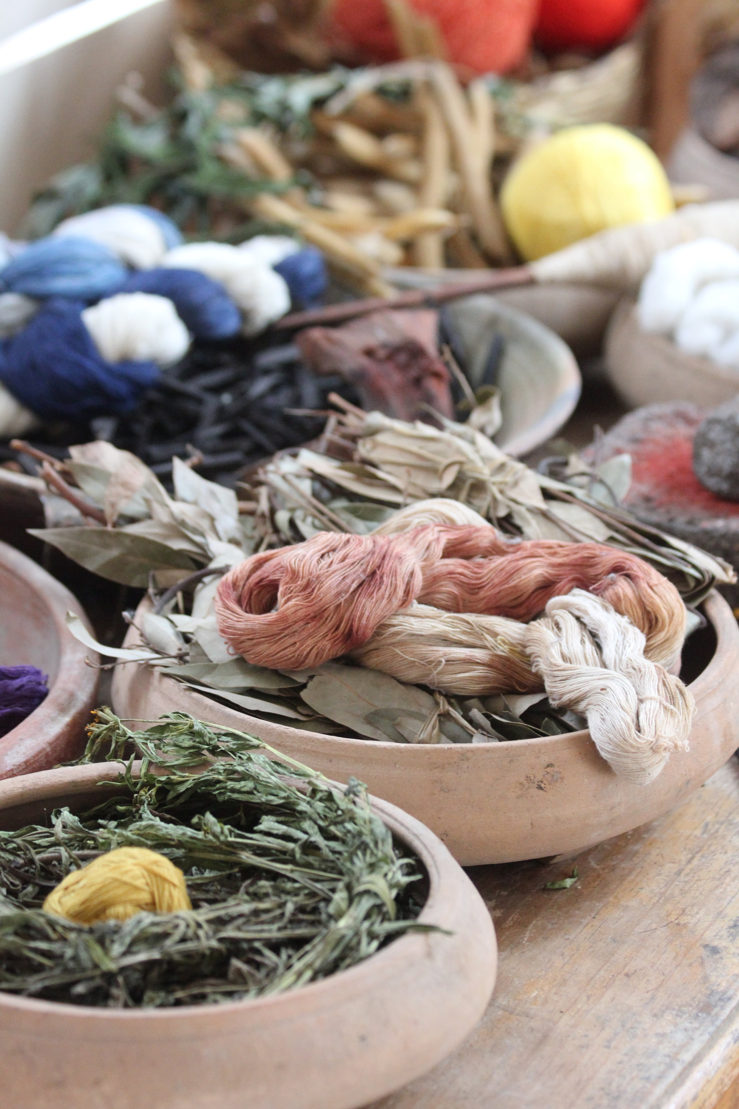Natural dye sources used by Living Threads Co. artisans in Guatemala