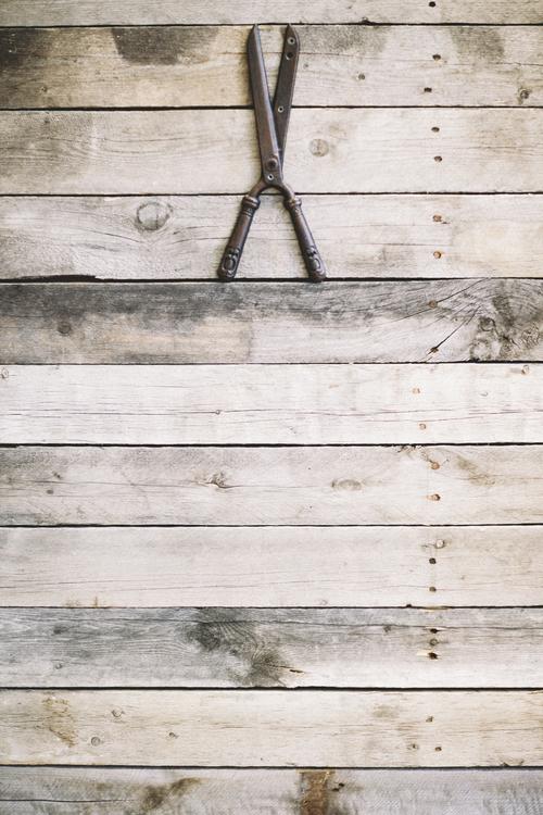 Shear and wood.jpg