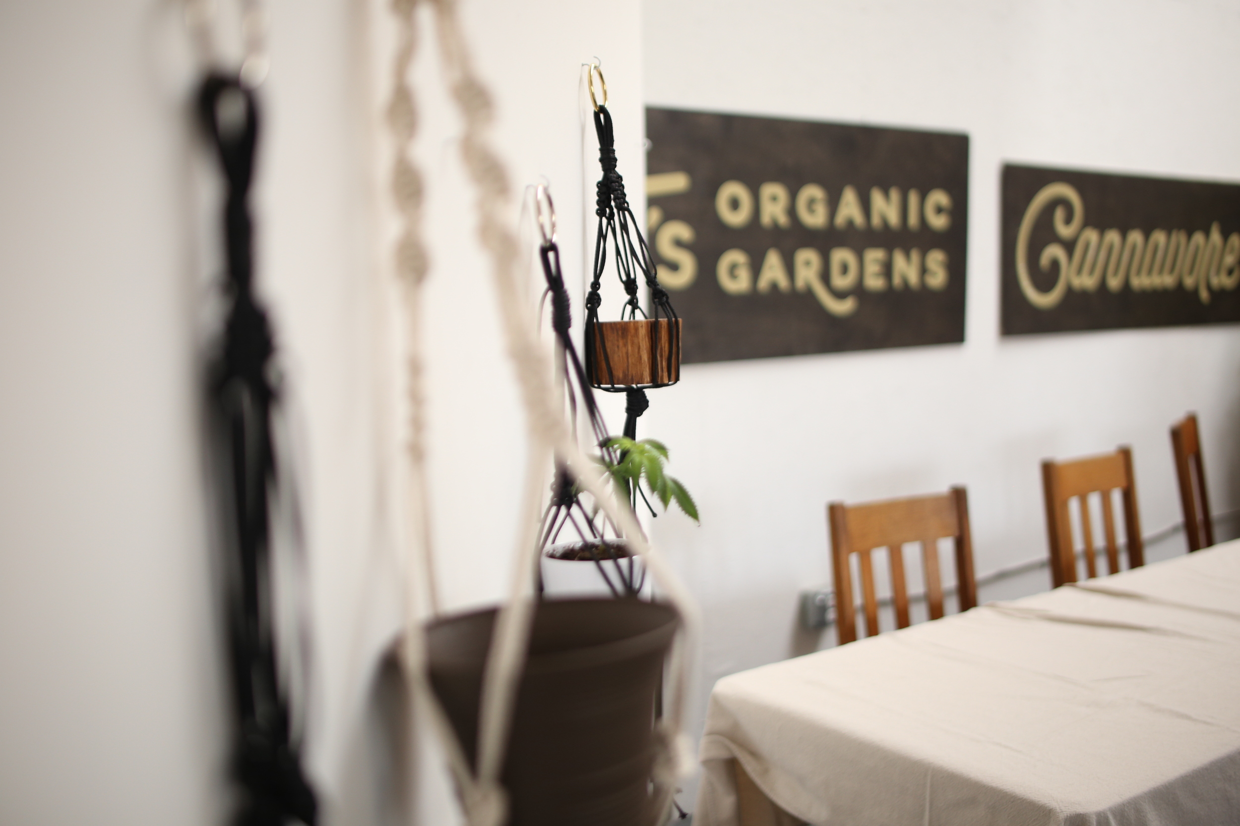 TJ's Organic Gardens and Cannavore at Make & Mary.