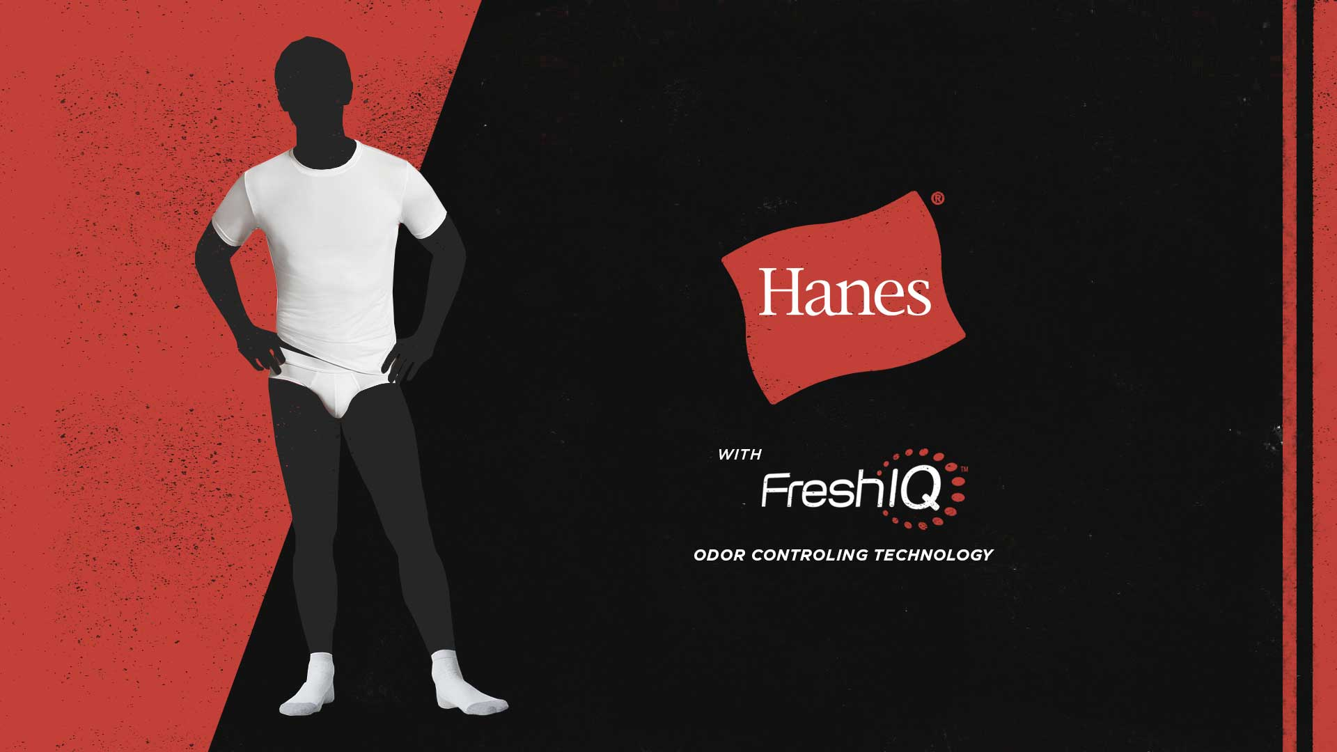 Hanes_08.jpg