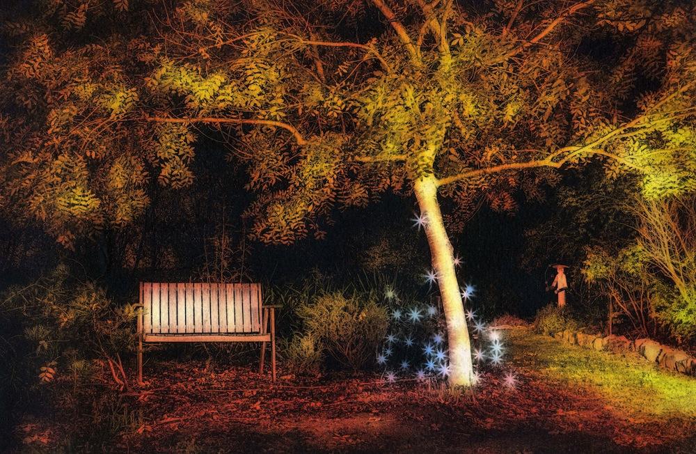 Golden_Tree_Sara_Huffen 1000px.jpeg