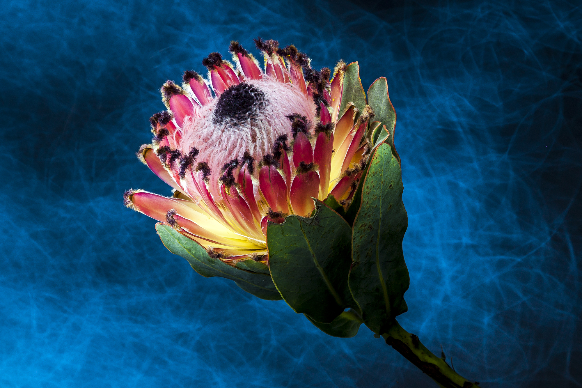 Light Painting and digital retouch is a keen combination of skills often experimented with.