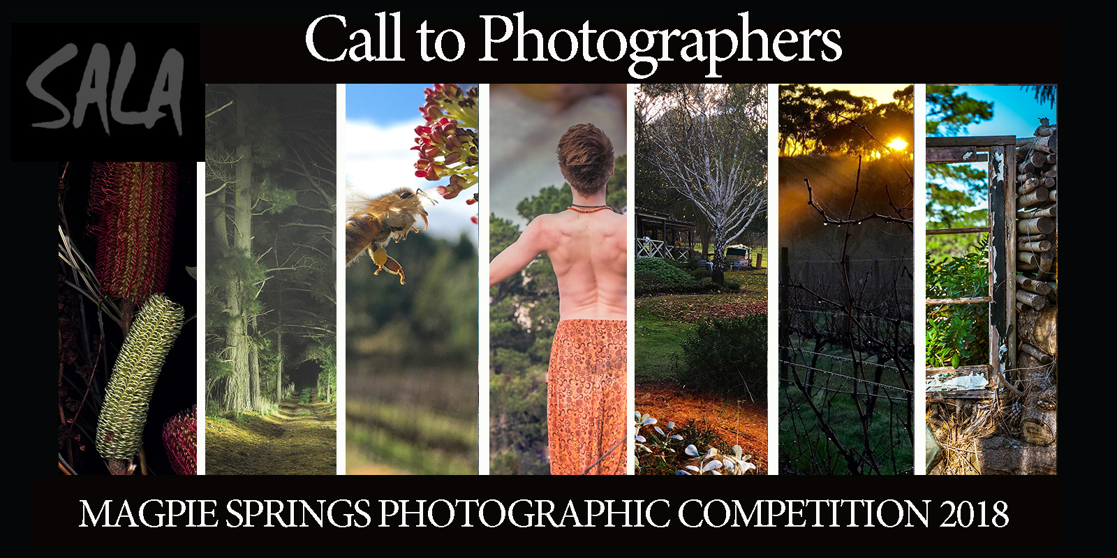 Magpie-Springs-Photographic-Competition-2018