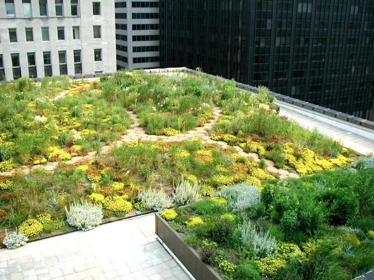 Chicago City Hall Green Roof image via:   greenroofs.com     Cover your roof in plants to clean the air and naturally cool your building in summer.