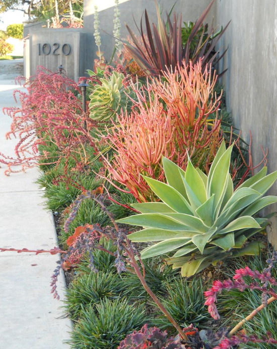 Image source:  Protracted Gardens