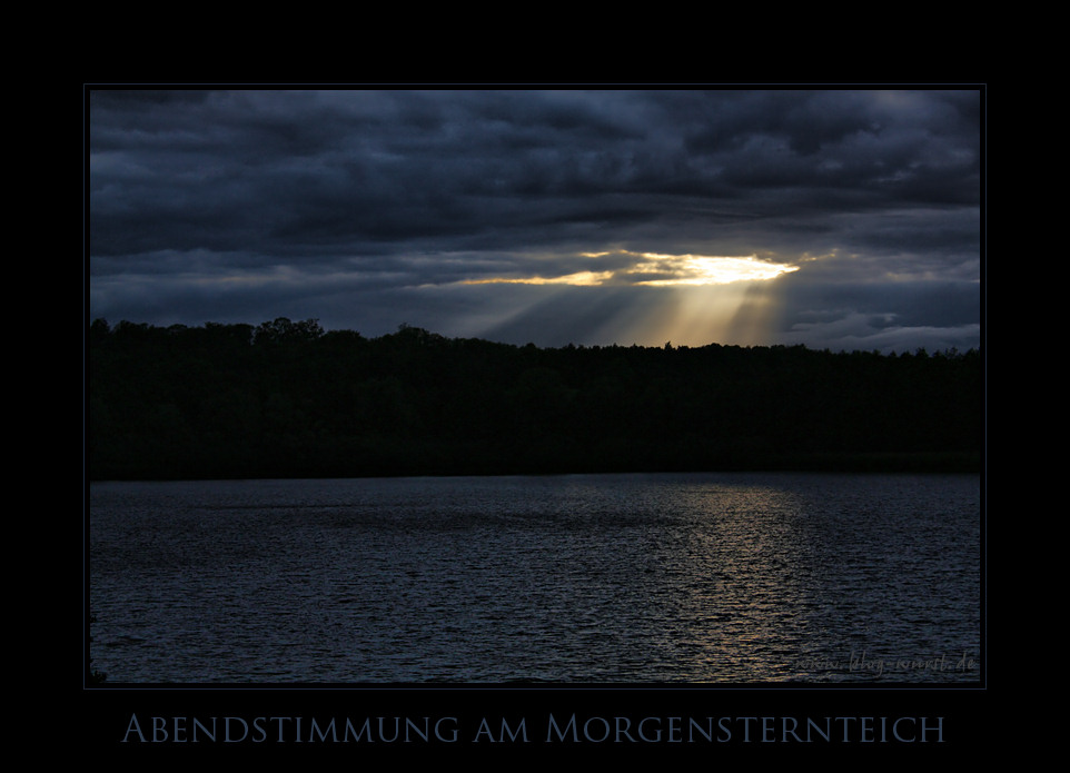Abendstimmung am Morgensternteich